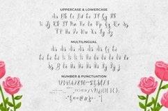 Web Font Bleubelle Font Product Image 5