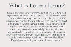 Caelan Sans Serif Font Family Pack Product Image 4