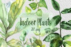 Watercolor Indoor Plants Clip Art Set Product Image 1