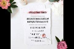 Felicitous Font Product Image 2