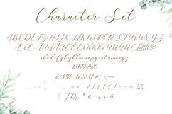 Cavilay Script - Wedding Font Product Image 3