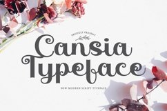 Web Font Cansia Product Image 1