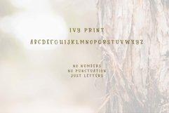 Juniper & Ivy Product Image 4