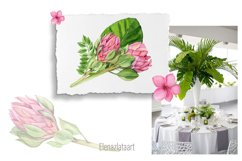 Watercolor tropical clipart, flower and leaves Product Image 4