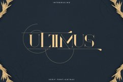 Ultimus serif font Extras Product Image 1
