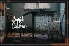 Halybed   Grunge Typeface Font Product Image 3