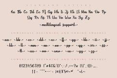 Magnola   Modern Script Web Font Product Image 6