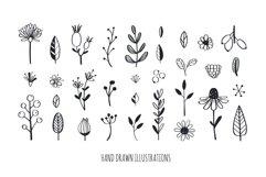 Floral botanical doodle illustrations set Product Image 2