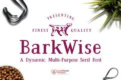 BarkWise - Multi-Purpose Serif Font Product Image 1