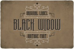 Black Widow Product Image 1