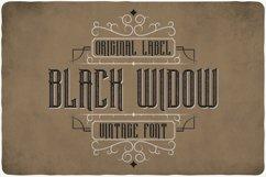 Black Widow Product Image 1