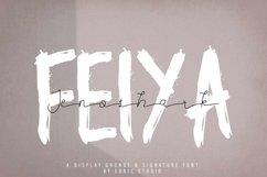 Jenoshark Feiya Product Image 2