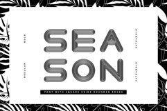 Season Sans - 4 weights Product Image 1