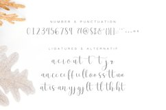 Effort Calligraphy Font Product Image 12