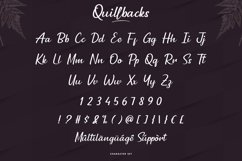 Quillbacks Product Image 4