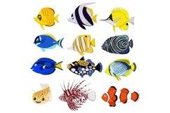 Cartoon Tropical Fish Vector Set Product Image 1