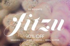 Jitzu Family Product Image 1