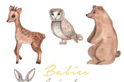 Woodland cute animals, Watercolor set, baby animals Product Image 3