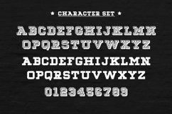 Web Font Niners Product Image 4