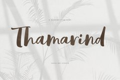 Thamarind Handwritten Font Product Image 1