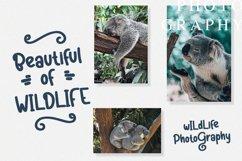 Koalakuu Playful Font Product Image 5