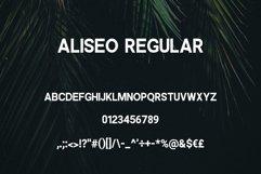 Aliseo Font Family - Sans Serif Product Image 3