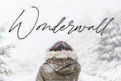 Winterlady Beautiful Script Font Product Image 3