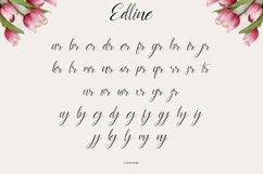 edline Product Image 4