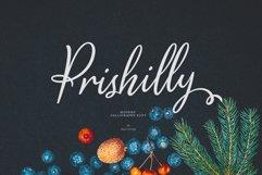 Prishilly Product Image 1