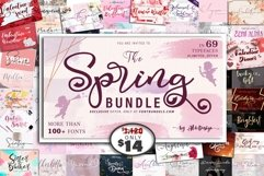 The 69 In 1 Spring Bundle - WEB FONT Product Image 1