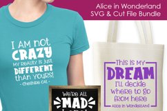 Alice in Wonderland Quotes 2 - SVG and Cut Files Product Image 2