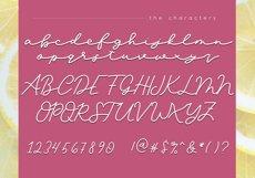 Lemonade - Handwritten Script Font Product Image 6