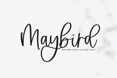 Maybird - Handwritten Script Font Product Image 1