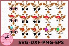 Giraffe Face SVG, Safari Animal face svg, Giraffe Eyelashes Product Image 1