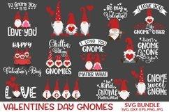 Valentine Gnomes Svg. Product Image 1