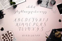 Web Font Dolly Script Product Image 2