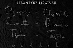 Serameyer Product Image 5