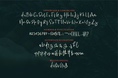Nooleigh | A Stylish Signature Font Product Image 6