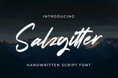 Web Font Salzgitter - Script Fonts Product Image 1