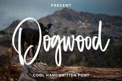 Web Font Dogwood - Cool Handwritten Font Product Image 1