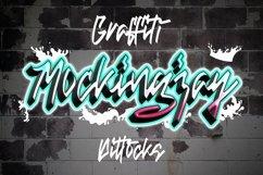 Web Font Dittocks - Graffiti Fonts Product Image 4