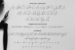 Dontheus - Signature Font Product Image 3