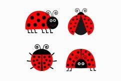 Ladybug Ladybird icon set. Vector illustration Product Image 2