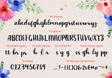 Brush Script Font Product Image 2