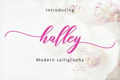Halley Script Product Image 1
