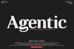 Agentic - Serif font family Product Image 1