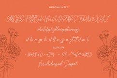 Ordionally Signature Font Product Image 8