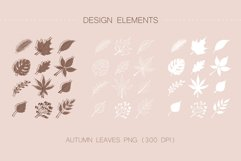 AUTUMN ELEMENTS vector bundle Product Image 5