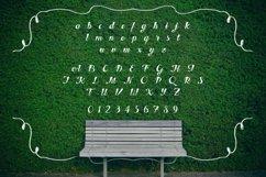 Web Font Hedge Product Image 4