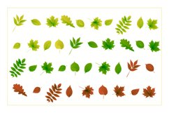 Autumn watercolor style vector collection. Product Image 3